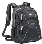 High Sierra¨ Swerve Compu-Backpack