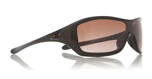 Women's Ideal Sunglasses